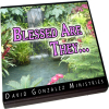Blessed Are They...by Pastor David J. Gonzalez
